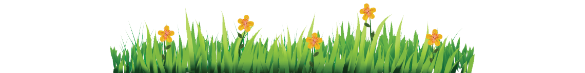 deco-fleur-vivert