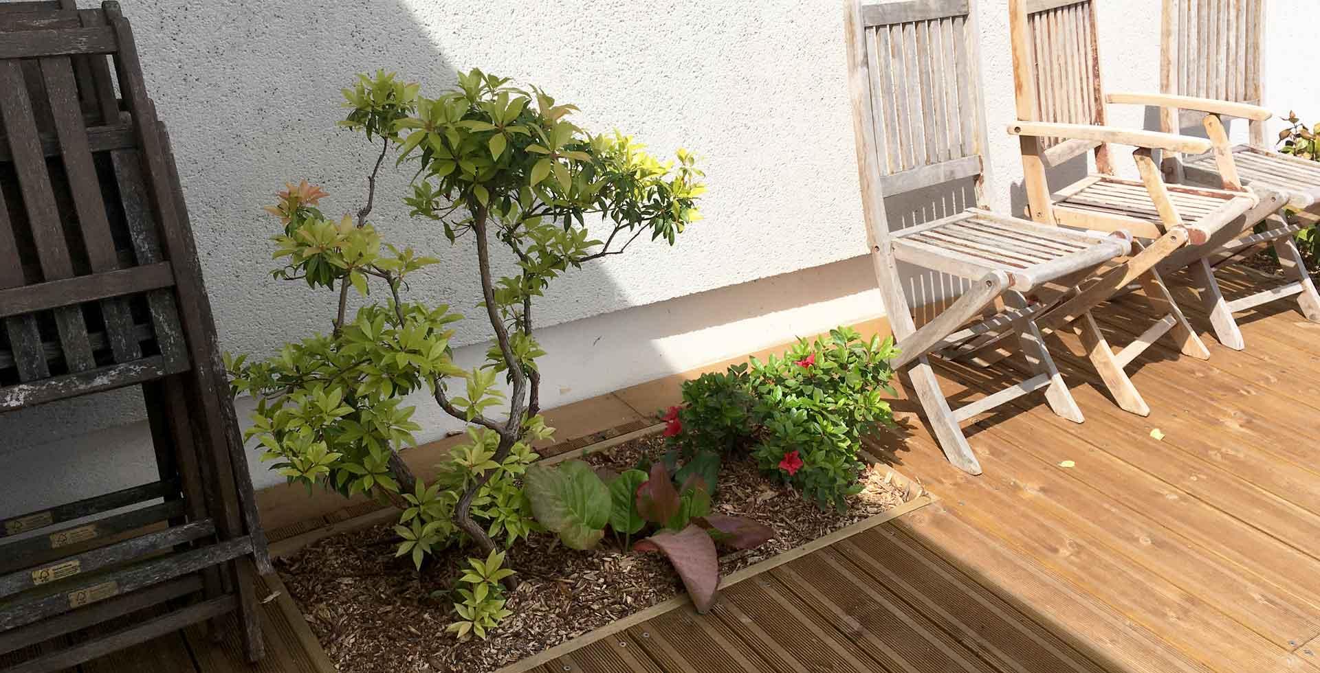 slider5-Plantation-terrasse-bois-plante-vivert