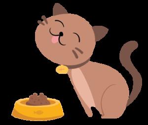 services-plus-nourrissage-animaux-vivert