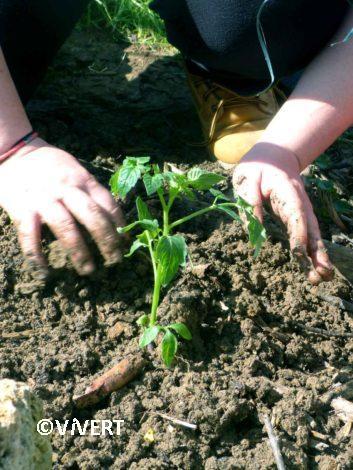 demarche-permaculture-vivert