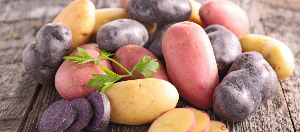 patates variétés